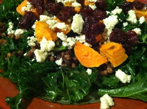 A fall version with blue cheese, lentils, sweet potatoes, and cranberries