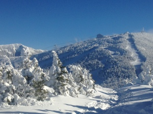 Bluebird day at Cannon Mountain